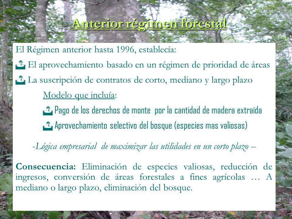 Anterior régimen forestal