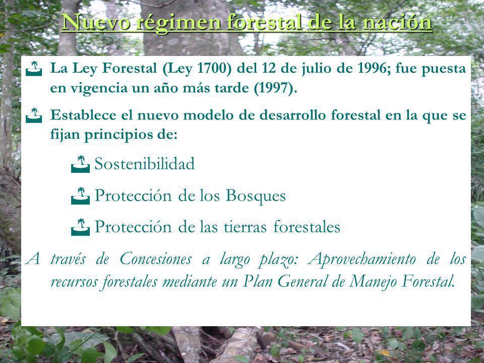Nuevo régimen forestal de la nación