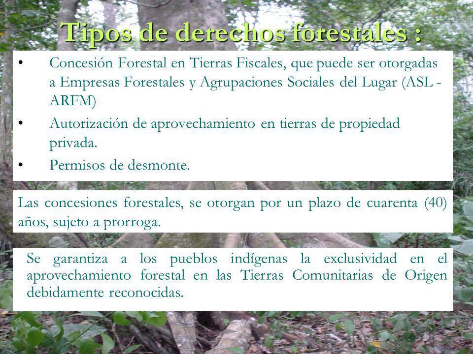 Tipos de derechos forestales :