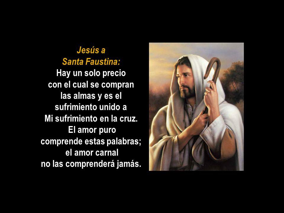 Jesús a Santa Faustina: Hay un solo precio con el cual se compran las almas y es el sufrimiento unido a Mi sufrimiento en la cruz.