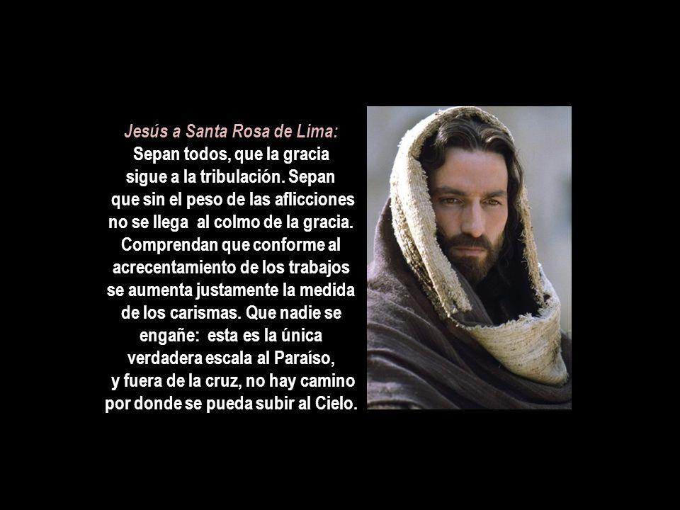 Jesús a Santa Rosa de Lima: Sepan todos, que la gracia sigue a la tribulación.