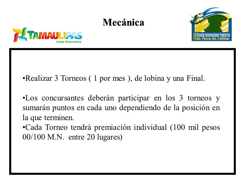 Mecánica Realizar 3 Torneos ( 1 por mes ), de lobina y una Final.