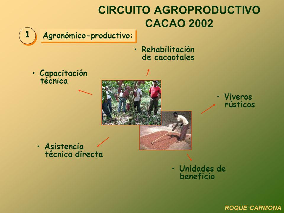 CIRCUITO AGROPRODUCTIVO CACAO 2002 Agronómico-productivo: