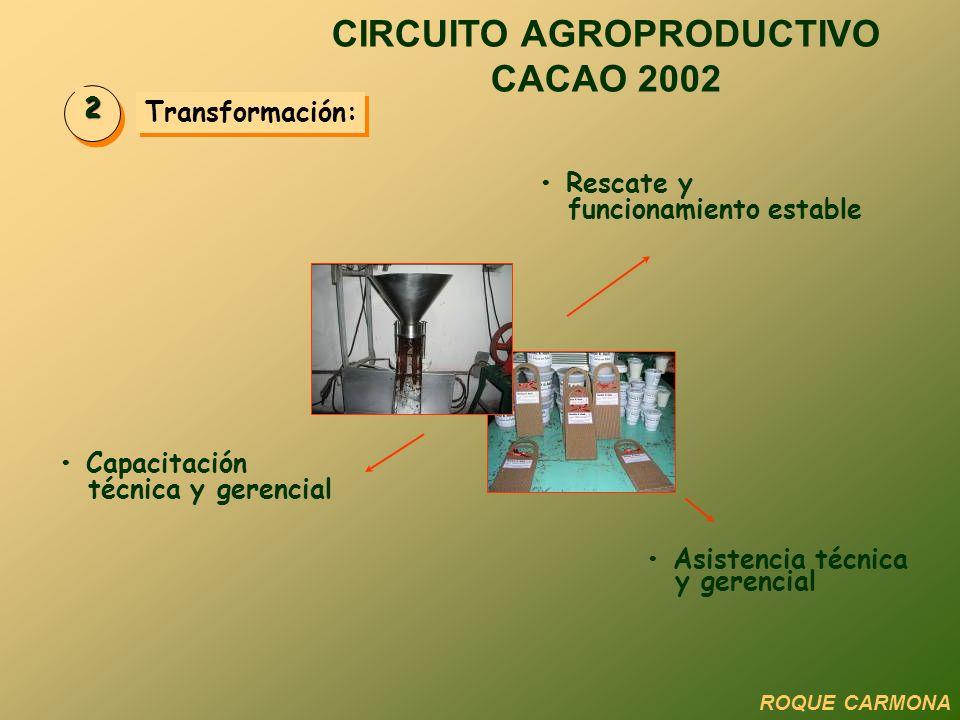 CIRCUITO AGROPRODUCTIVO CACAO 2002