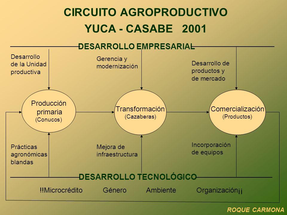 CIRCUITO AGROPRODUCTIVO YUCA - CASABE 2001