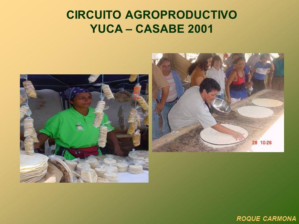 CIRCUITO AGROPRODUCTIVO YUCA – CASABE 2001
