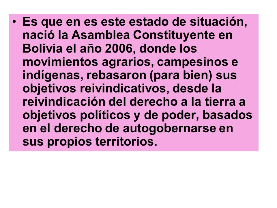 Es que en es este estado de situación, nació la Asamblea Constituyente en Bolivia el año 2006, donde los movimientos agrarios, campesinos e indígenas, rebasaron (para bien) sus objetivos reivindicativos, desde la reivindicación del derecho a la tierra a objetivos políticos y de poder, basados en el derecho de autogobernarse en sus propios territorios.