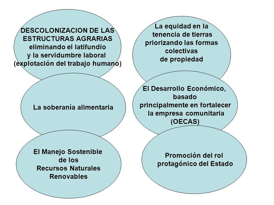 DESCOLONIZACION DE LAS ESTRUCTURAS AGRARIAS eliminando el latifundio