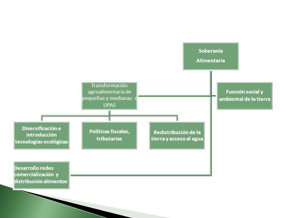 Transformación agroalimentaria de pequeñas y medianas s UPAS