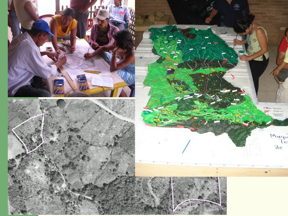 ¿Quiénes tienen experiencia en trabajar con mapas de forma participativa