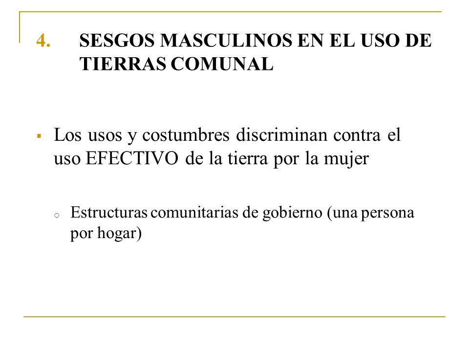 SESGOS MASCULINOS EN EL USO DE TIERRAS COMUNAL