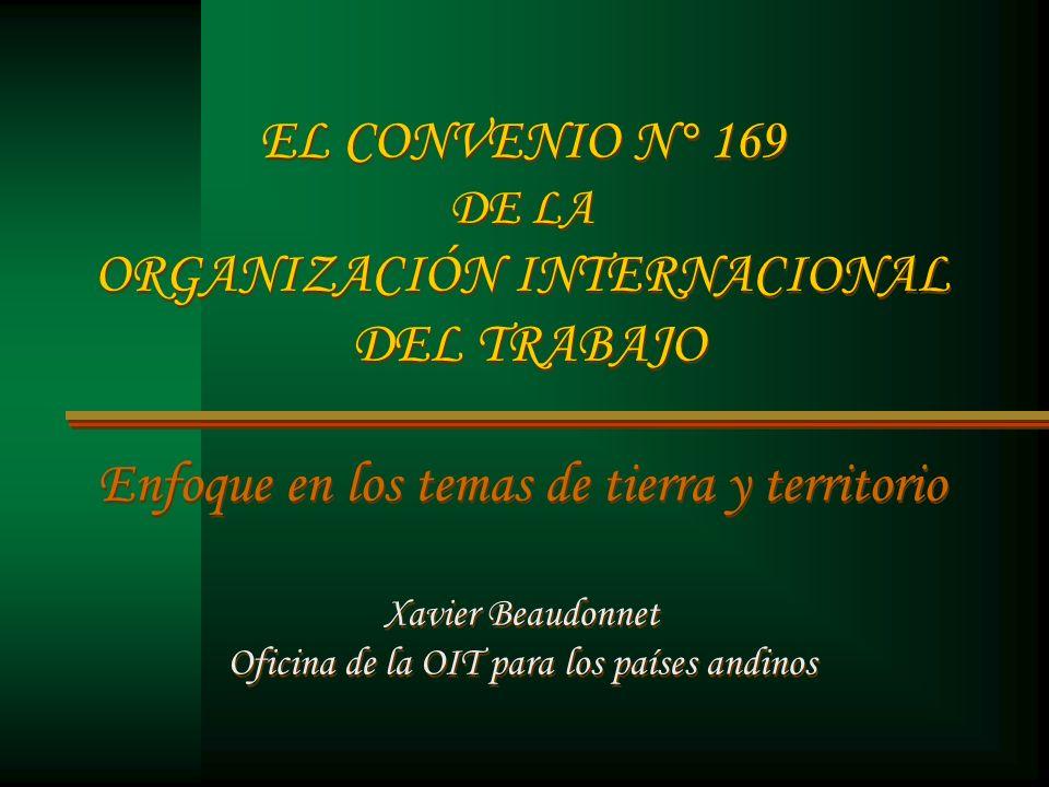 EL CONVENIO N° 169 DE LA ORGANIZACIÓN INTERNACIONAL DEL TRABAJO Enfoque en los temas de tierra y territorio Xavier Beaudonnet Oficina de la OIT para los países andinos