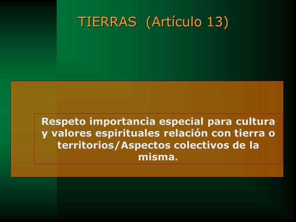 TIERRAS (Artículo 13)