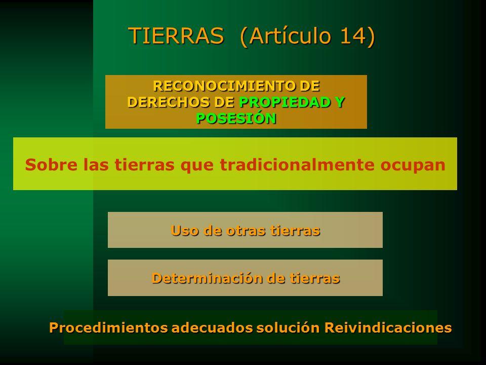 TIERRAS (Artículo 14) Sobre las tierras que tradicionalmente ocupan