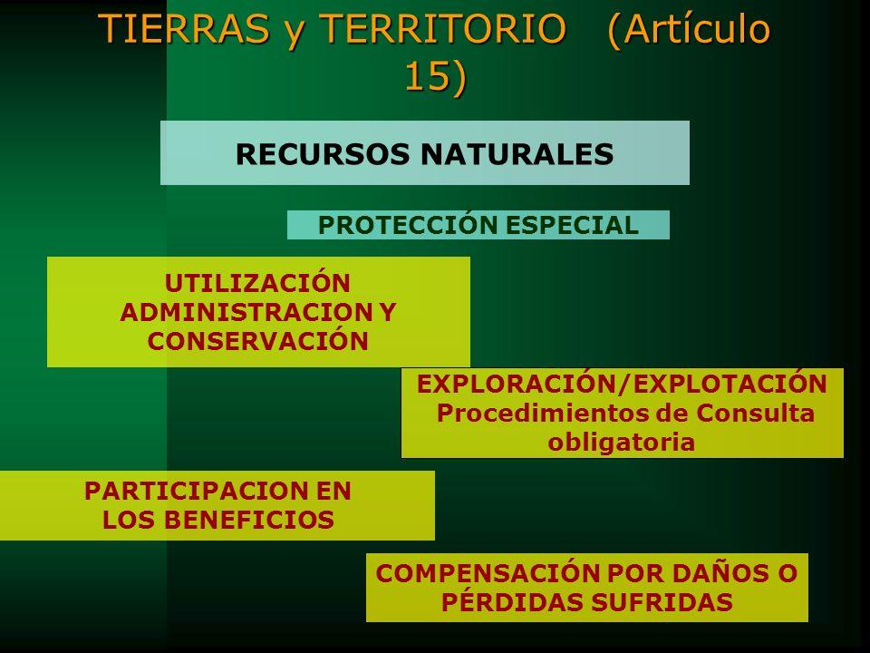 TIERRAS y TERRITORIO (Artículo 15)