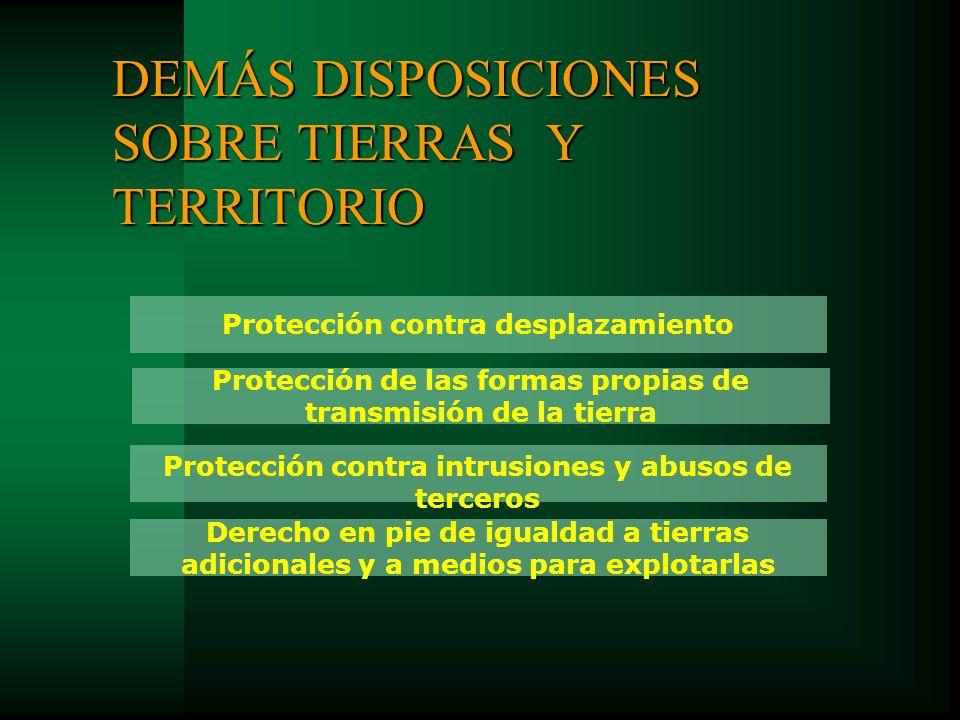 DEMÁS DISPOSICIONES SOBRE TIERRAS Y TERRITORIO