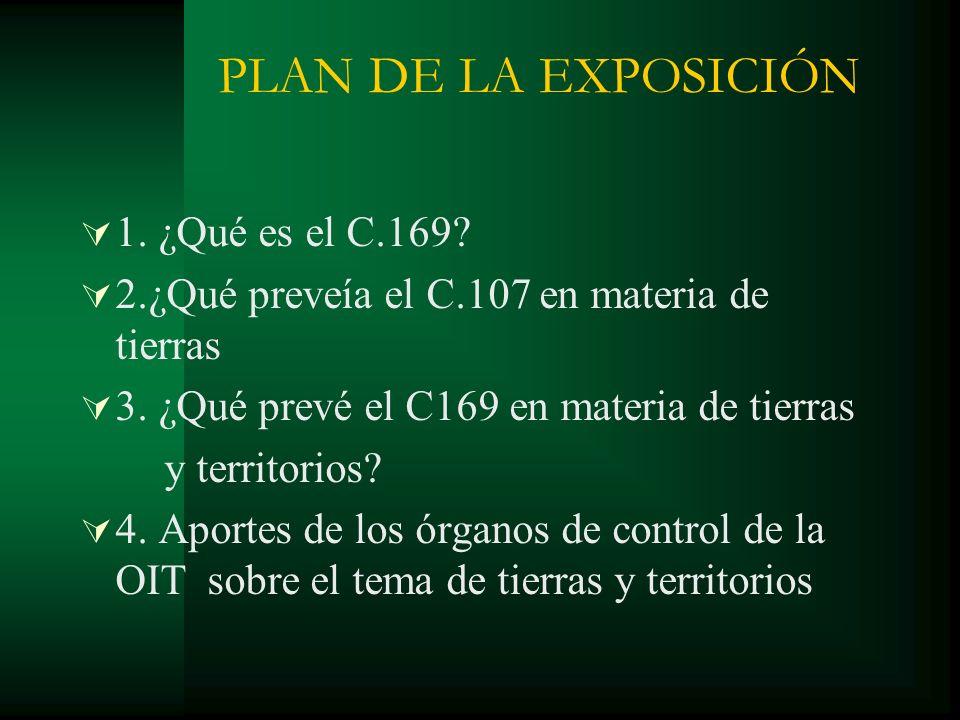 PLAN DE LA EXPOSICIÓN 1. ¿Qué es el C.169