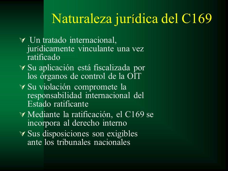 Naturaleza jurídica del C169
