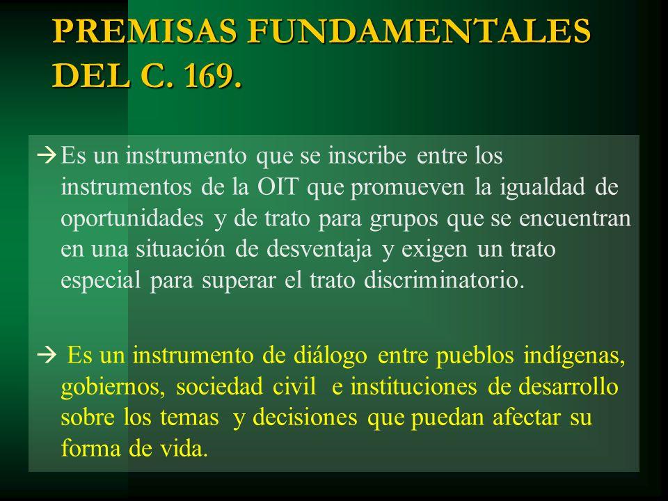 PREMISAS FUNDAMENTALES DEL C. 169.