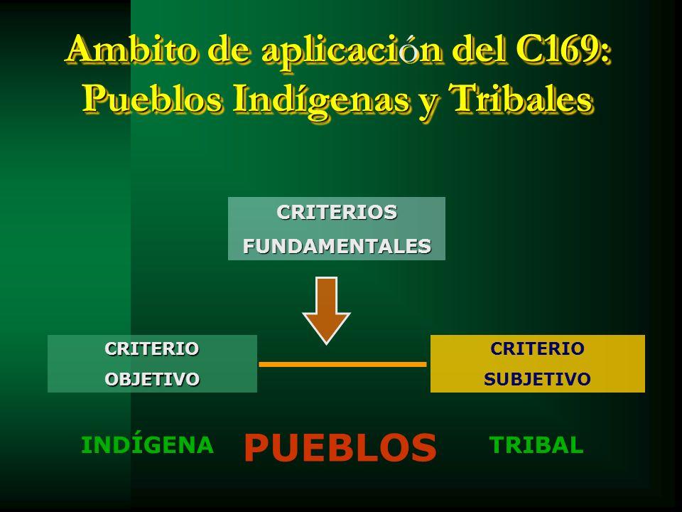 Ambito de aplicación del C169: Pueblos Indígenas y Tribales