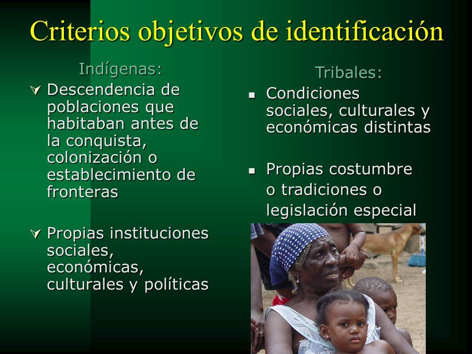 Criterios objetivos de identificación