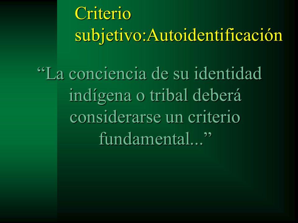 Criterio subjetivo:Autoidentificación