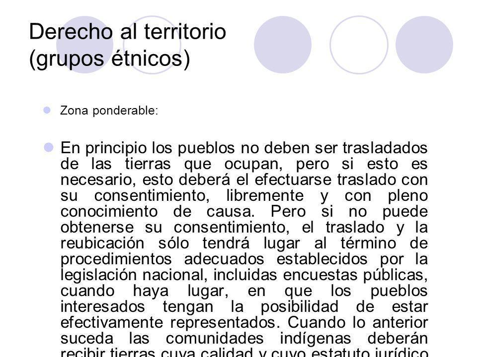 Derecho al territorio (grupos étnicos)