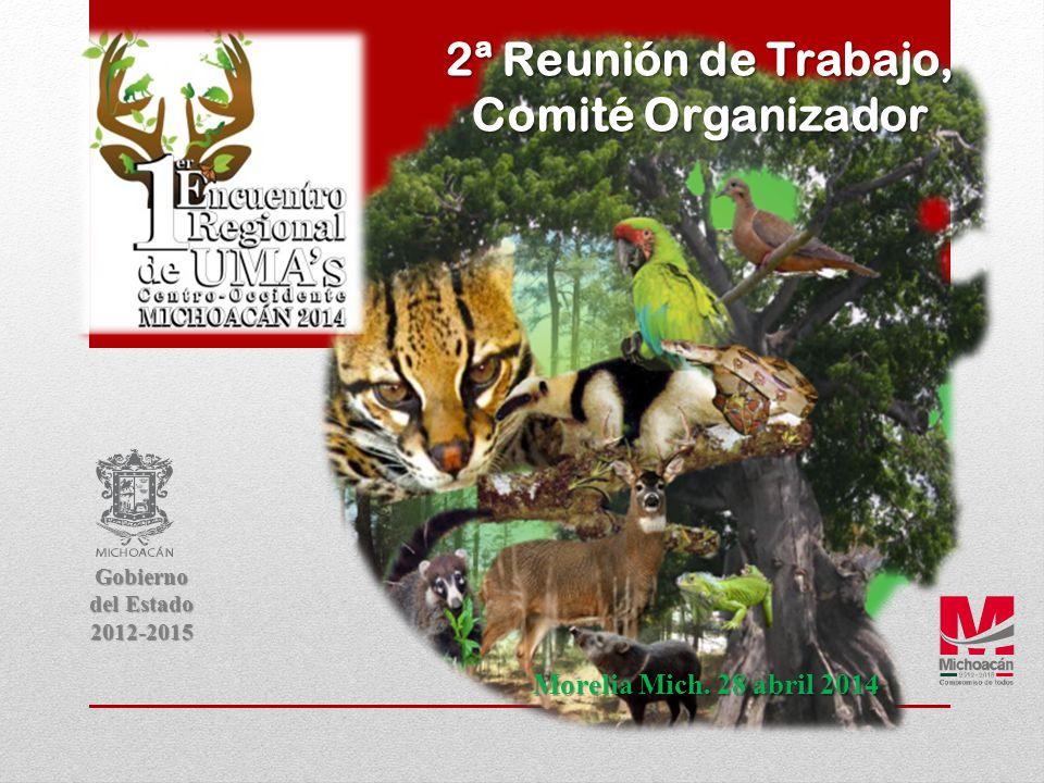 2ª Reunión de Trabajo, Comité Organizador