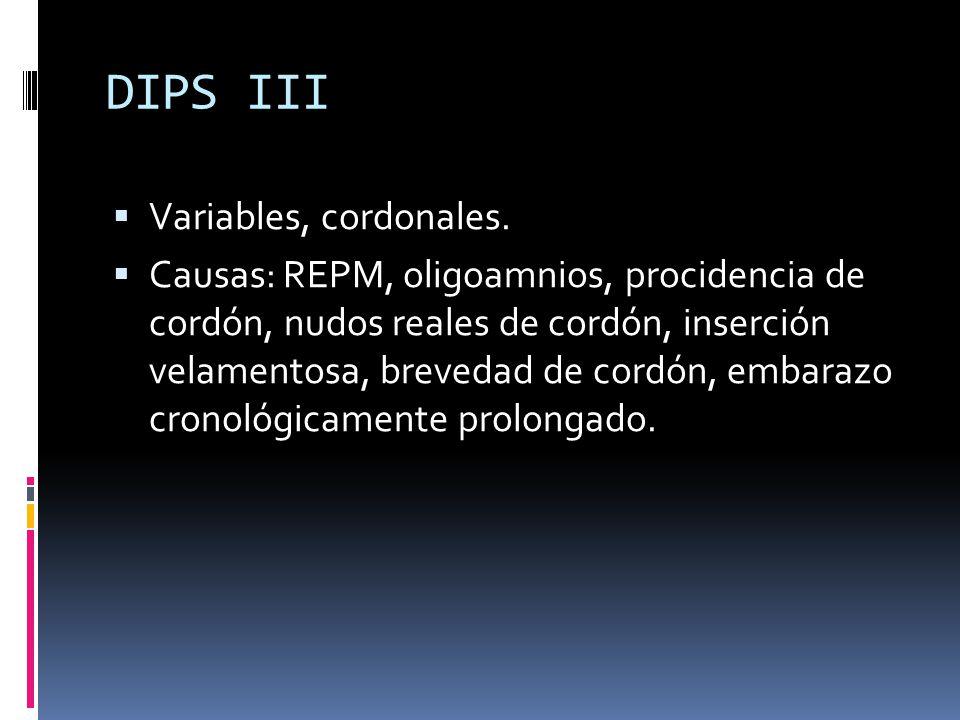 DIPS III Variables, cordonales.