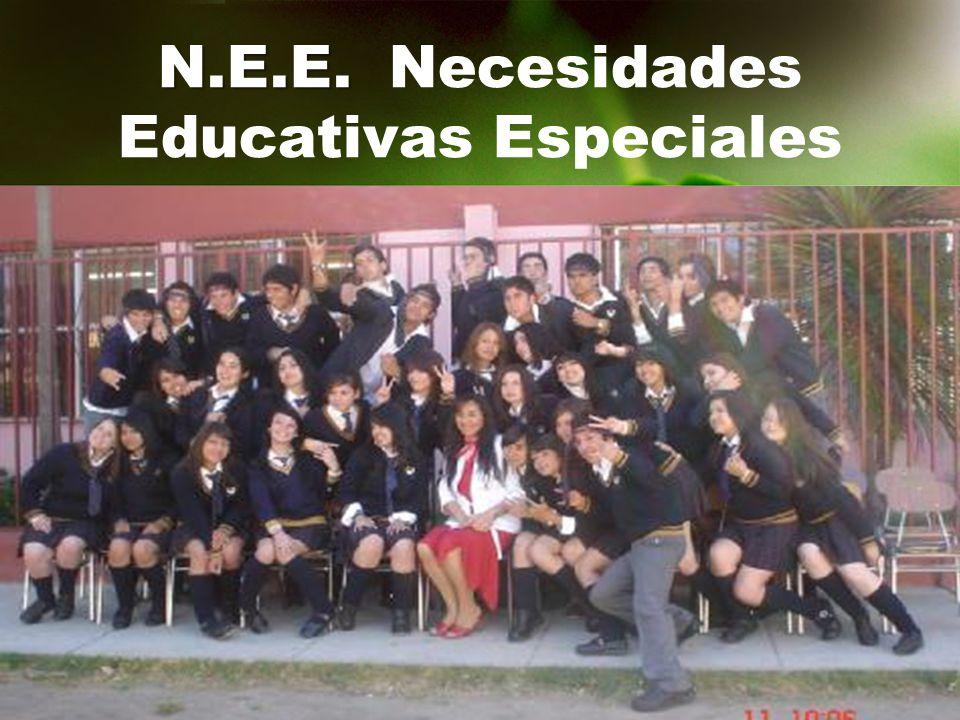 N.E.E. Necesidades Educativas Especiales
