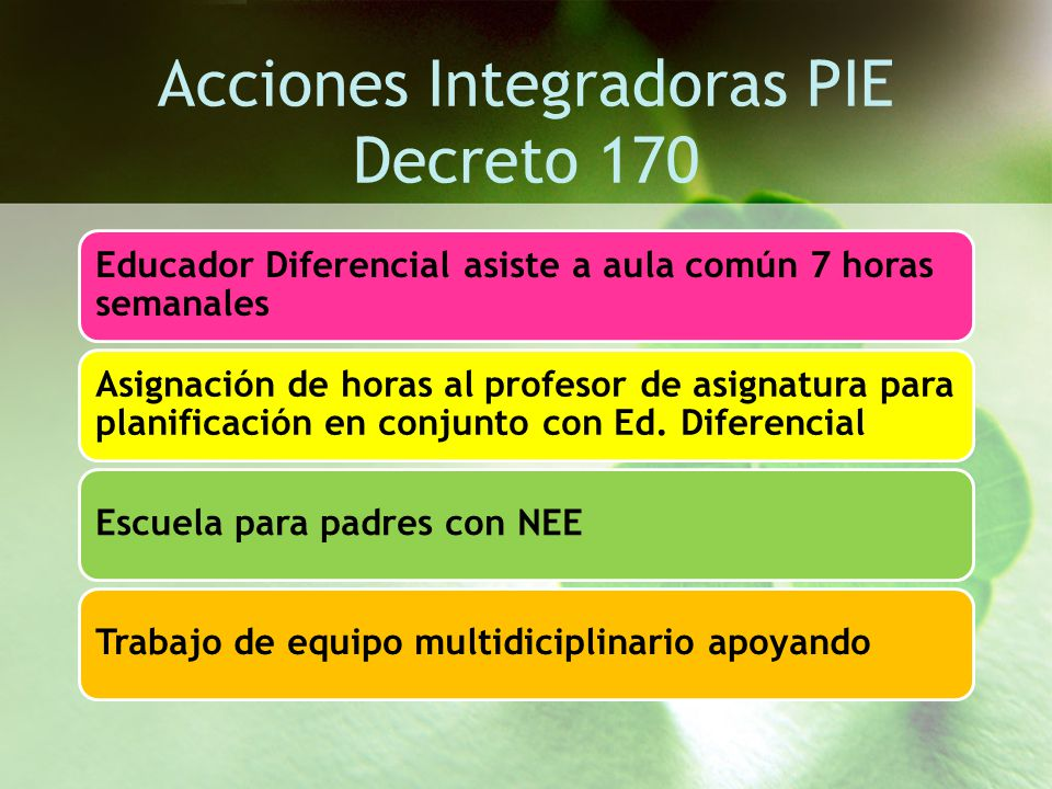 Acciones Integradoras PIE Decreto 170
