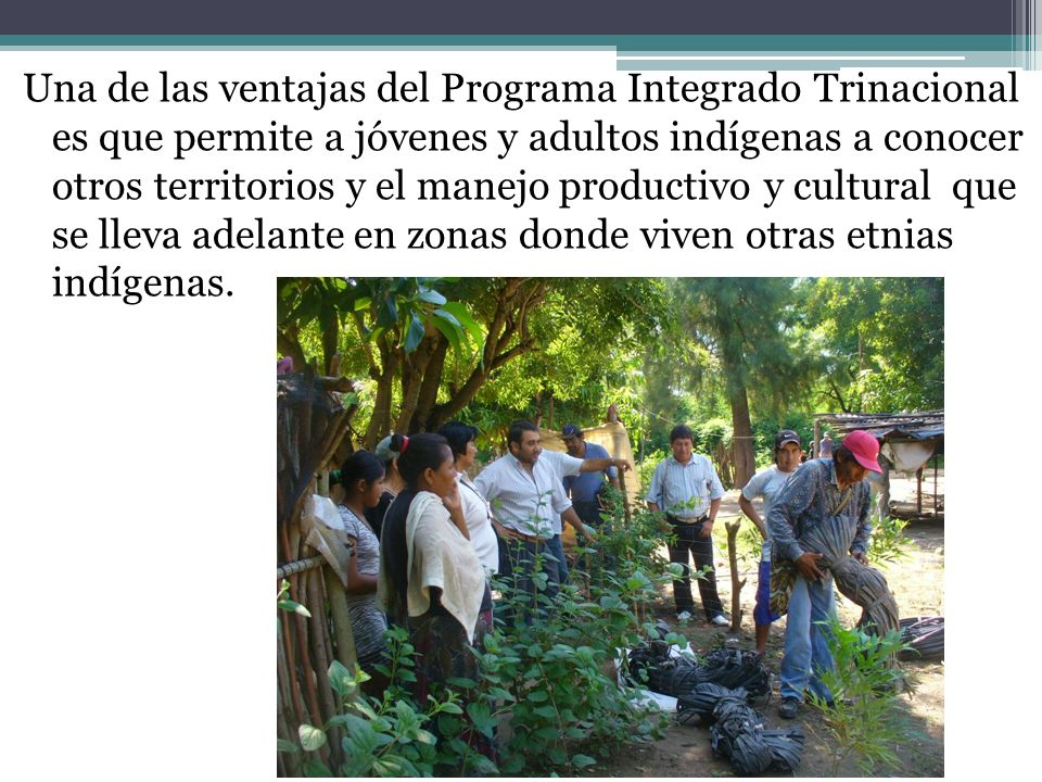 Una de las ventajas del Programa Integrado Trinacional es que permite a jóvenes y adultos indígenas a conocer otros territorios y el manejo productivo y cultural que se lleva adelante en zonas donde viven otras etnias indígenas.