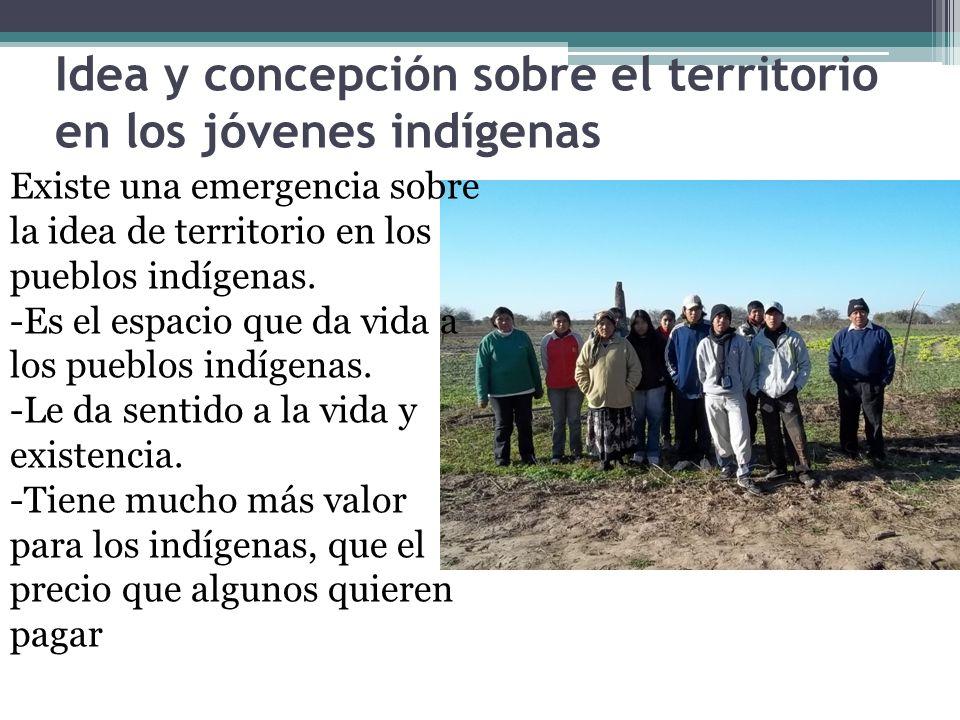 Idea y concepción sobre el territorio en los jóvenes indígenas