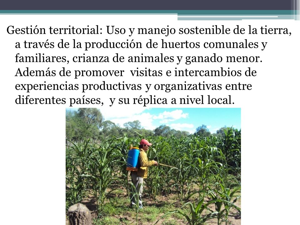 Gestión territorial: Uso y manejo sostenible de la tierra, a través de la producción de huertos comunales y familiares, crianza de animales y ganado menor.