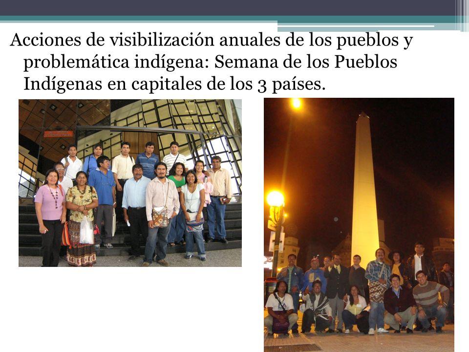 Acciones de visibilización anuales de los pueblos y problemática indígena: Semana de los Pueblos Indígenas en capitales de los 3 países.