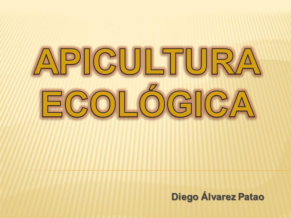 APICULTURA ECOLÓGICA Diego Álvarez Patao