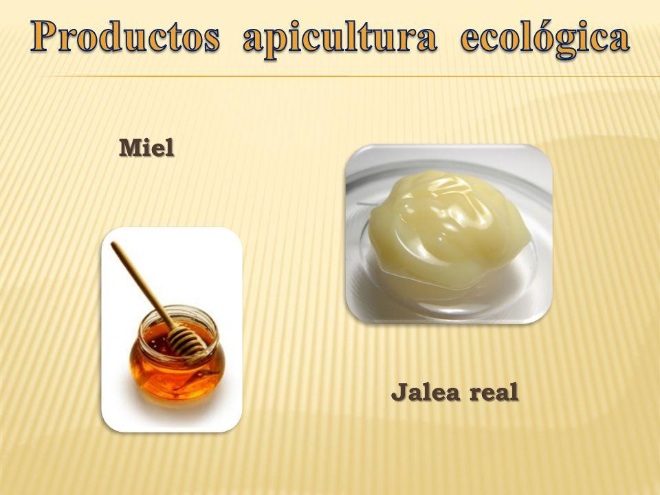Productos apicultura ecológica