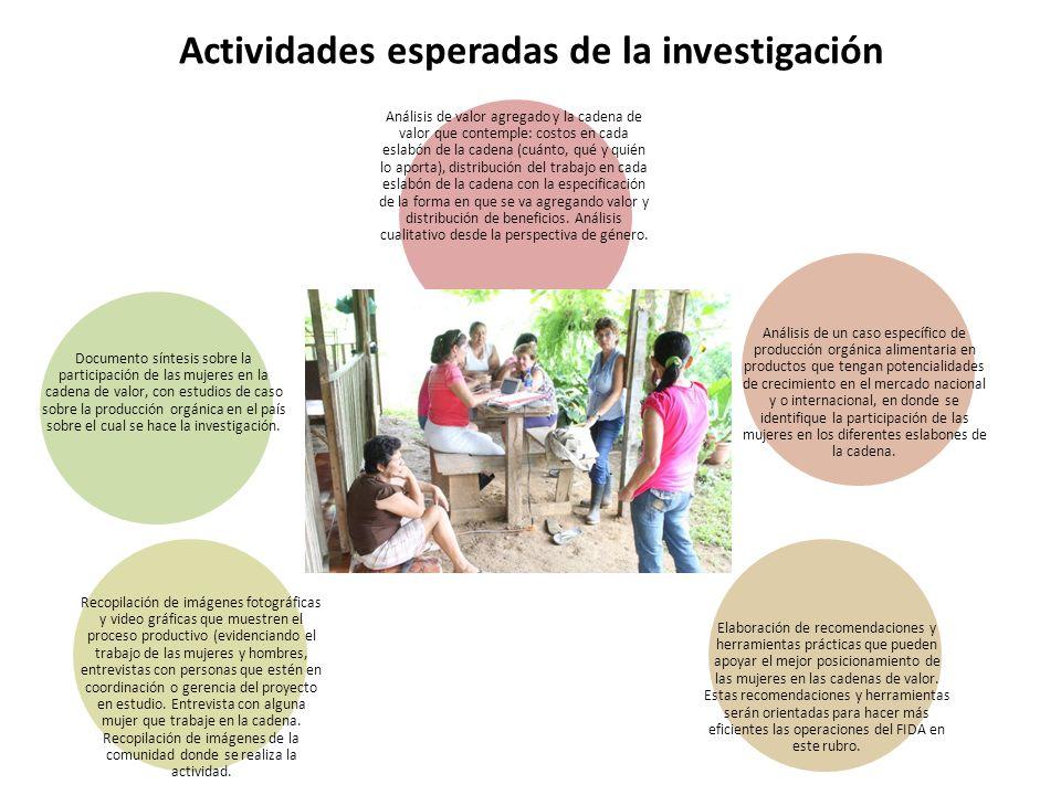 Actividades esperadas de la investigación