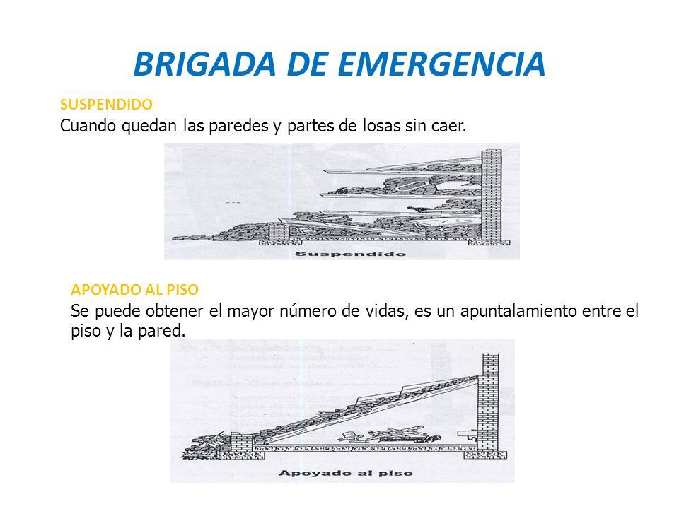 BRIGADA DE EMERGENCIA SUSPENDIDO