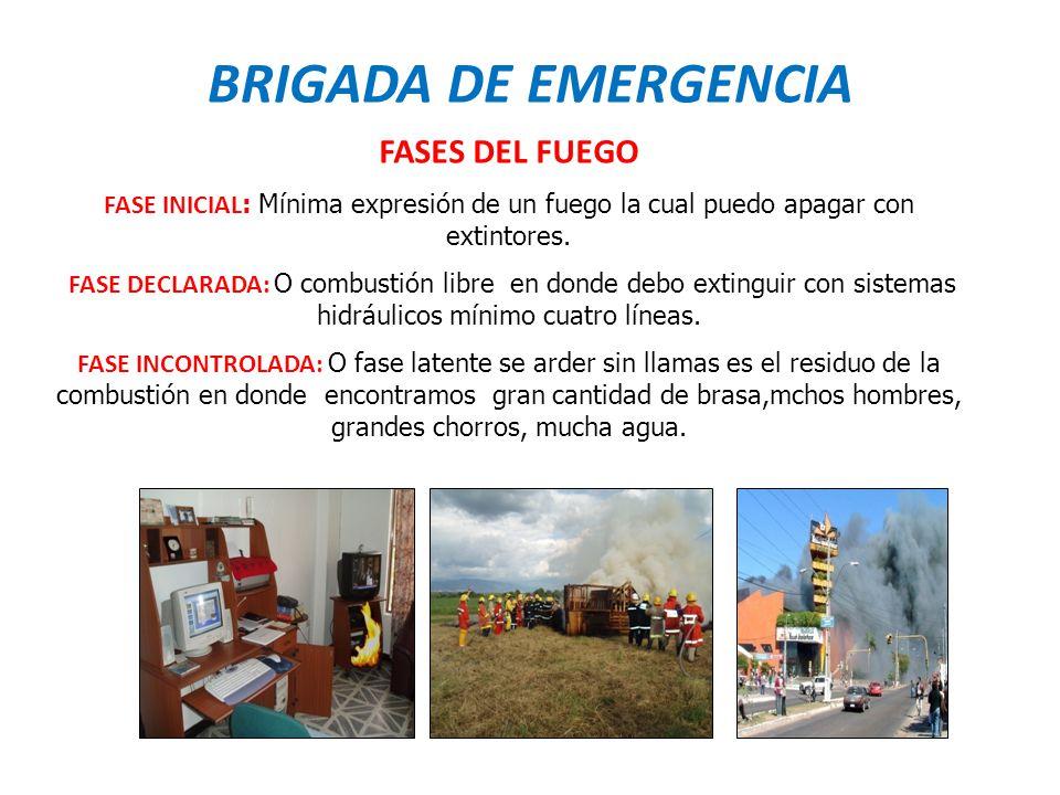 BRIGADA DE EMERGENCIA FASES DEL FUEGO
