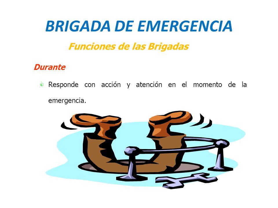 BRIGADA DE EMERGENCIA Funciones de las Brigadas Durante