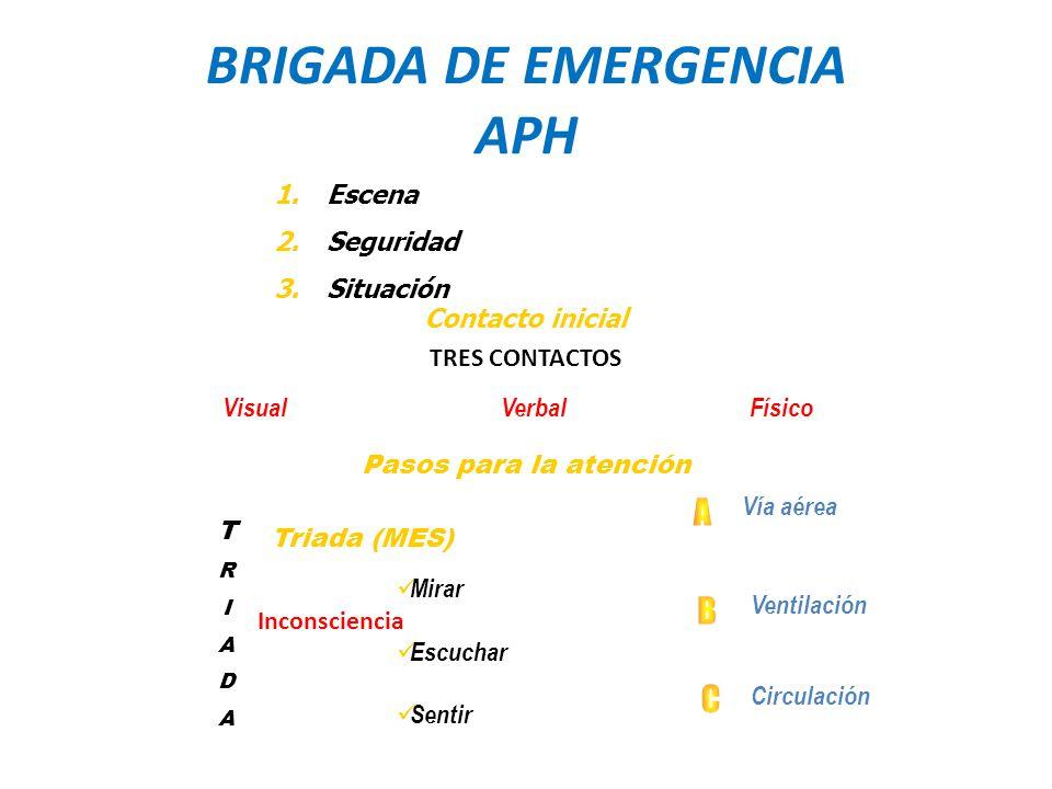 BRIGADA DE EMERGENCIA APH
