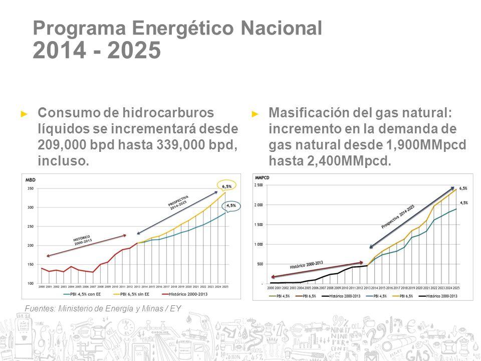 2014 - 2025 Programa Energético Nacional
