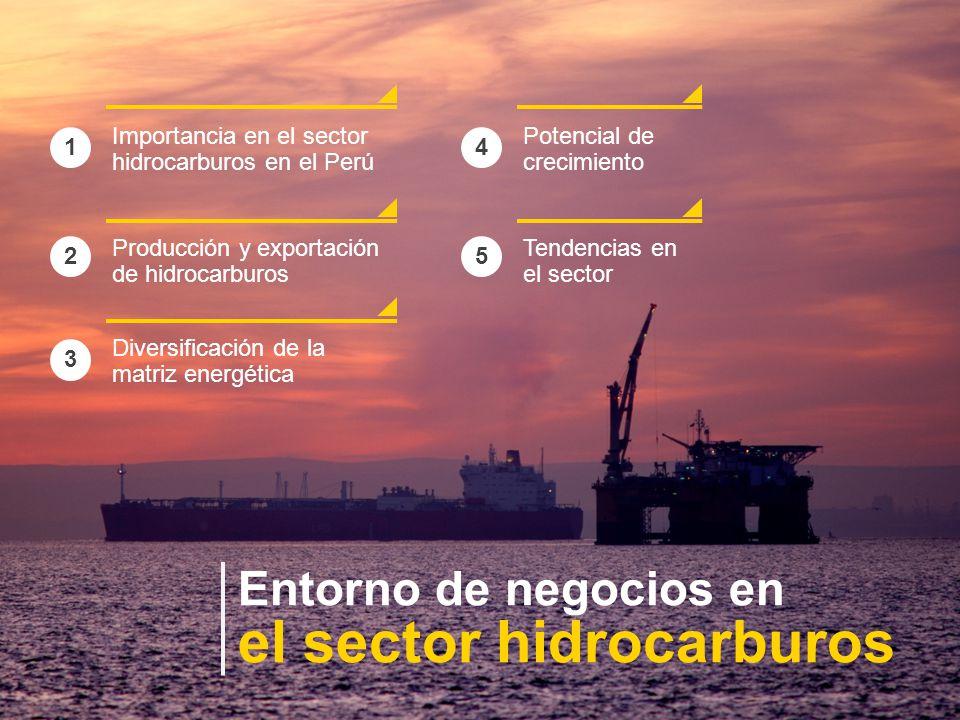 Entorno de negocios en el sector hidrocarburos