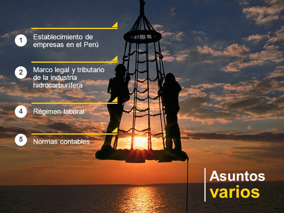 varios Asuntos Establecimiento de empresas en el Perú 1