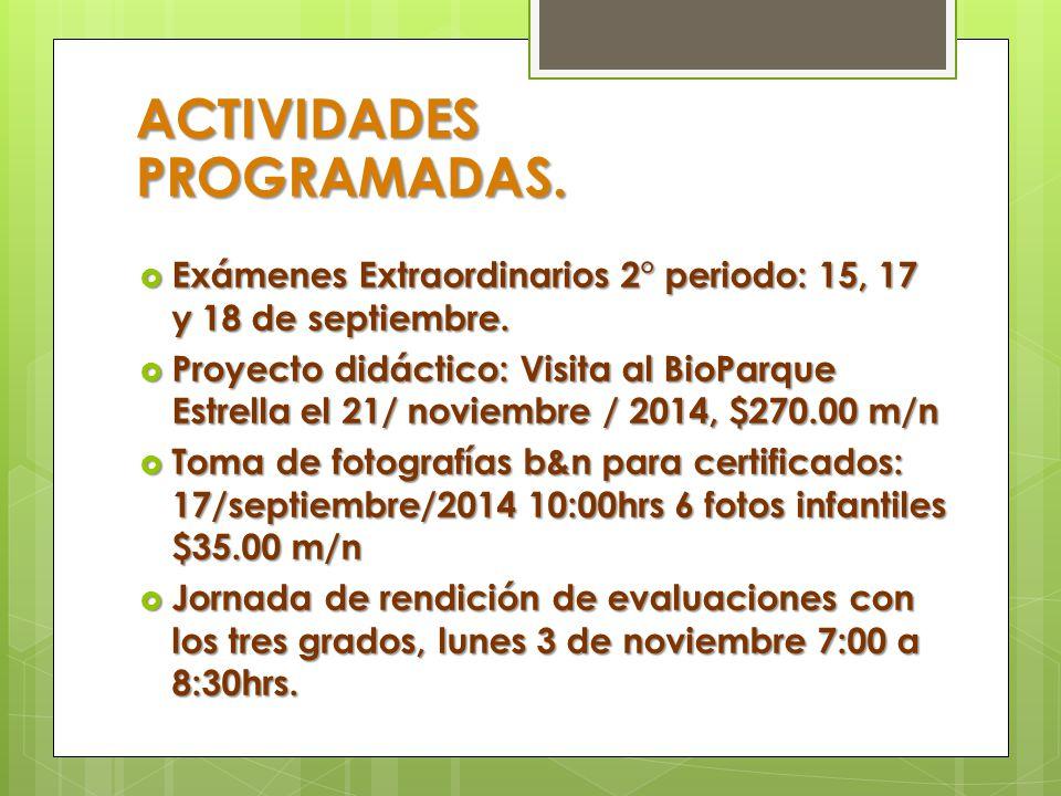 ACTIVIDADES PROGRAMADAS.