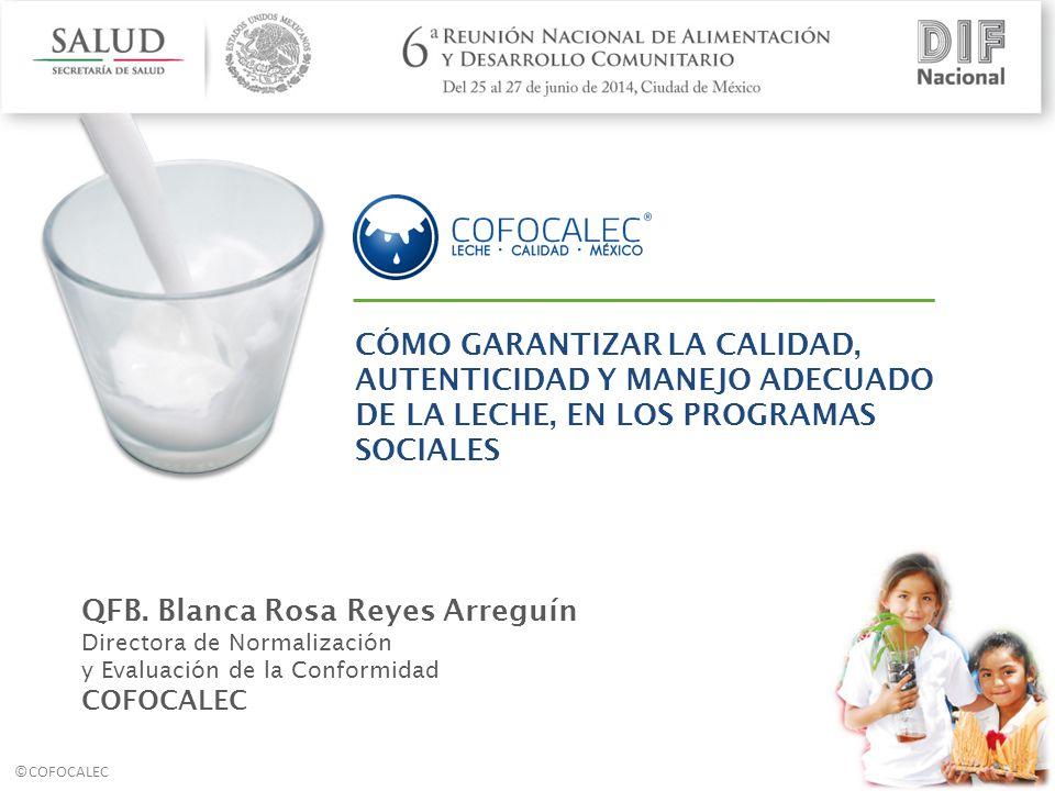 QFB. Blanca Rosa Reyes Arreguín
