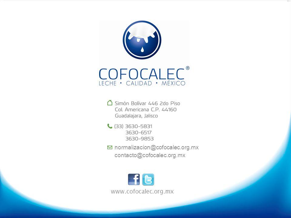 normalizacion@cofocalec.org.mx contacto@cofocalec.org.mx www.cofocalec.org.mx