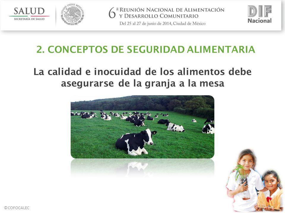 2. CONCEPTOS DE SEGURIDAD ALIMENTARIA