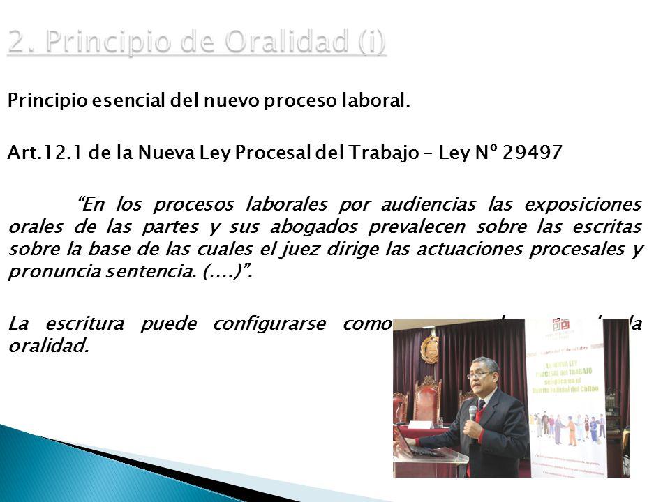 2. Principio de Oralidad (i)